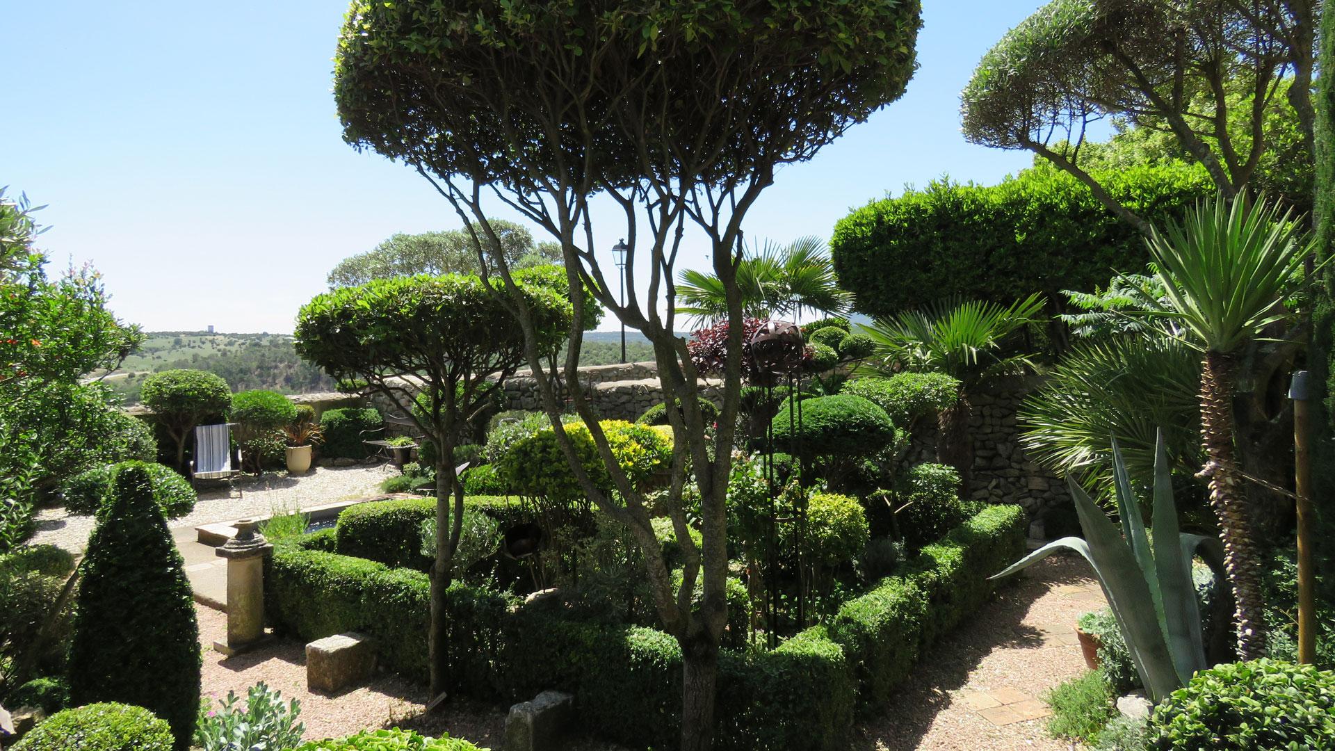 Les buis de Lussan | Jardin